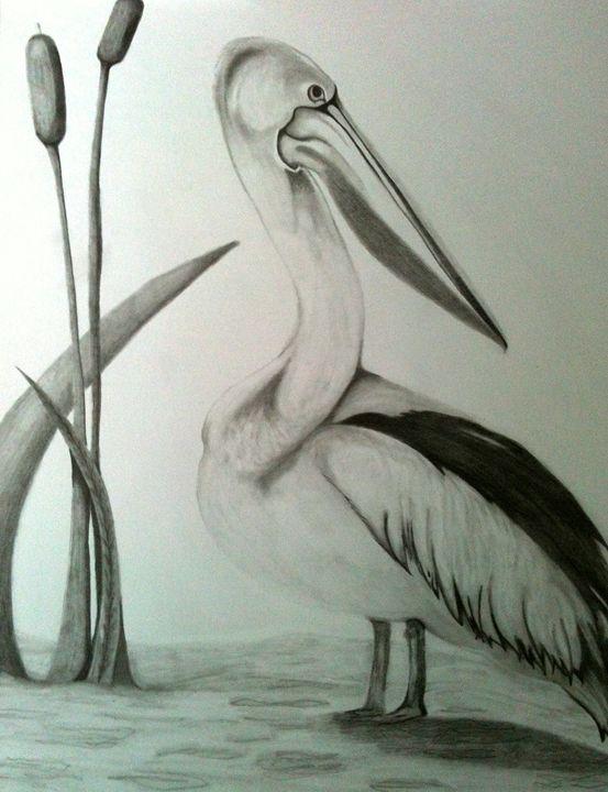 Pelican - Eye Candy Creations