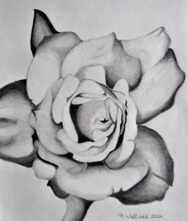 Dark Rose - Eye Candy Creations