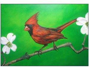 Cardinal with Dogwood flowers