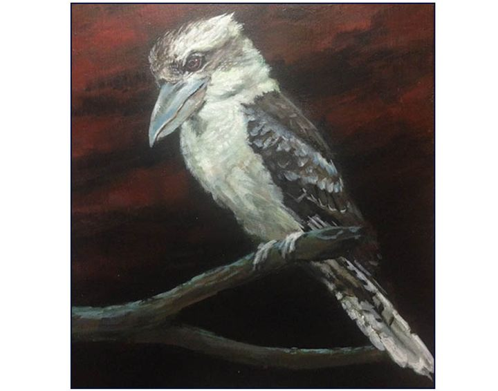 Kookaburra - Keith Murray