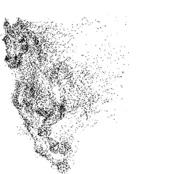Arabian Stallion Horse - Treasure Hustlers