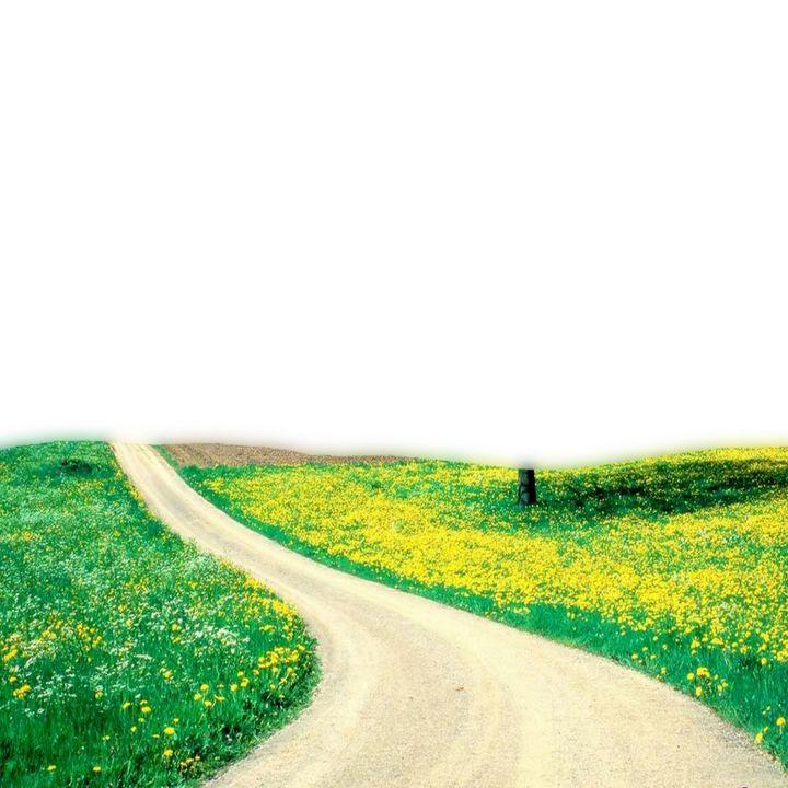 Garden Pathway - Treasure Hustlers