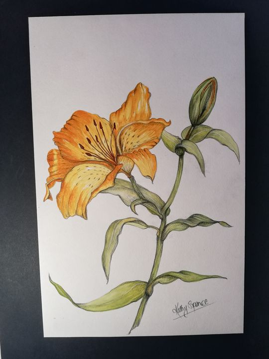 Lily Hybrid - East of London
