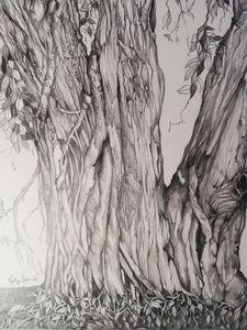 Tree 1. texture & tone