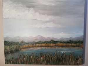 Reed pond Landscape