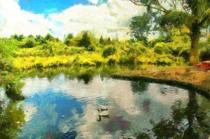 Idyllic scene of ducks in a pond - Chandra
