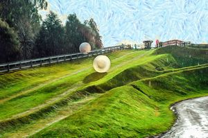 Zorbing Downhill-New Zeala