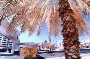 Date palm with mosque in background