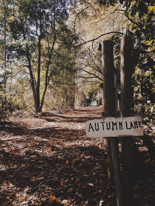Autumn Lane - FransheyMayumi