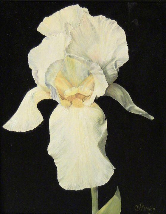 White Iris - Irina Fleming