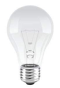 Bulb - Jamie Selestewa
