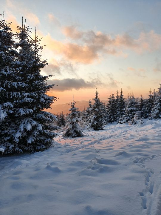 Winter sunset - Noemi K