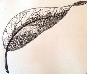 veined leaf