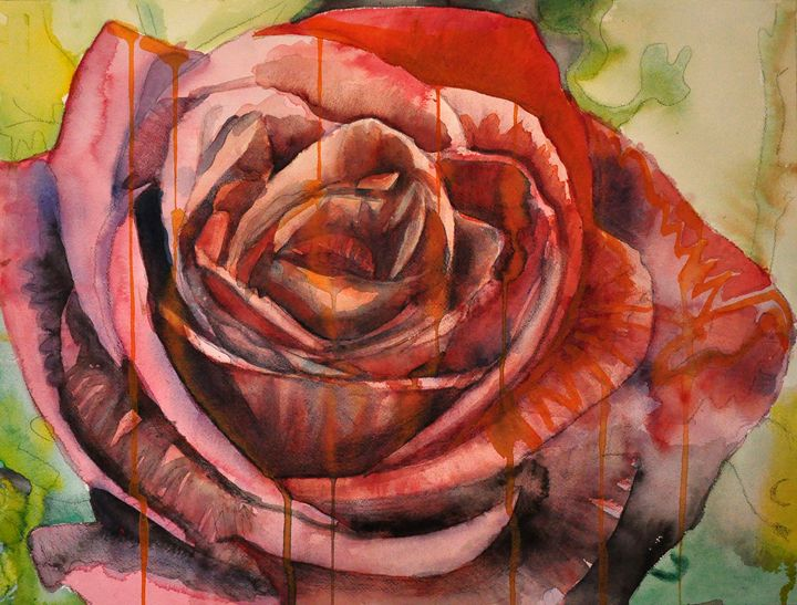 RoseDrip - Bill Phelan Fine Art