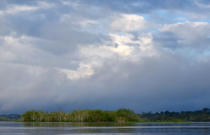 Clouds and Trees - Thebert Photography