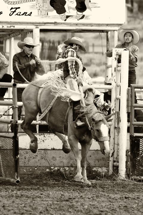 """""""Ride Em"""" - Western Images"""