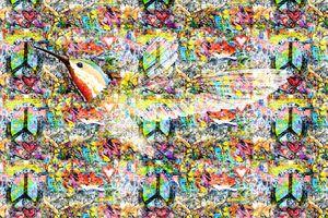 Flying Bird Graffiti