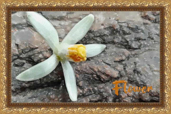 Flower - Deepak Creation