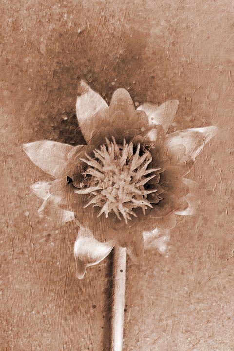 Dahlia Flower - Deepak Creation