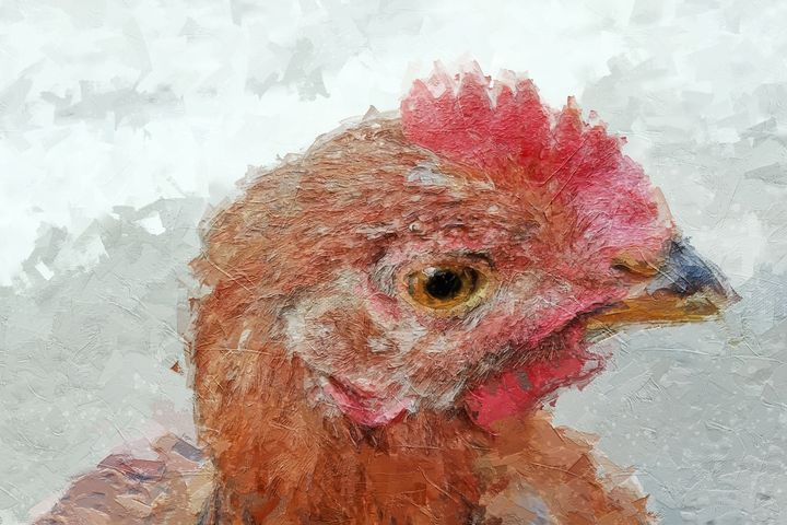 Hen Painting - Deepak Creation