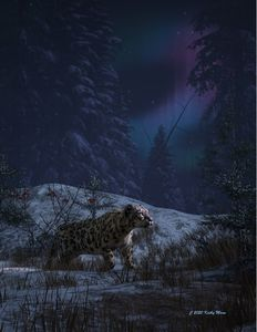 Snow leopard and northern lights