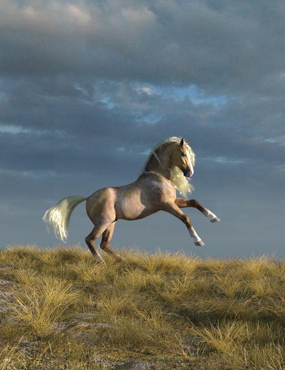 Playful Palomino Horse - Media Free Spirit