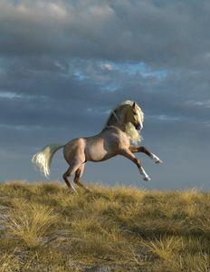 Playful Palomino Horse