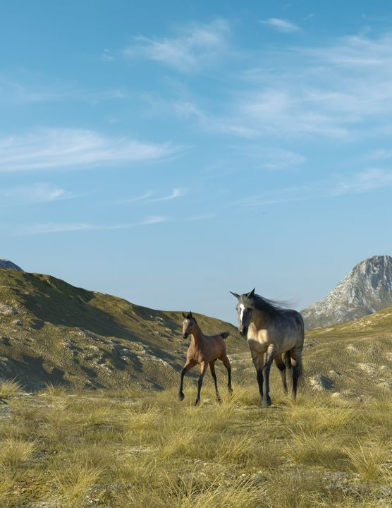 Mare and Foal - Media Free Spirit