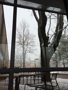 Winter in University
