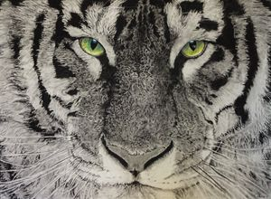 The Eye of the Tiger - Celine