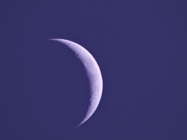 My First Ever Moon Picture - Mariah W. Photography