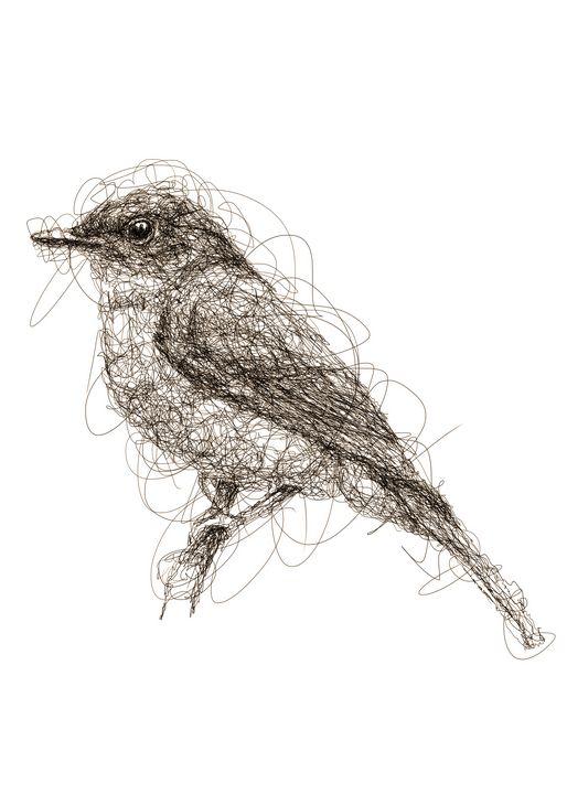 bluebird art - izmo scribbles