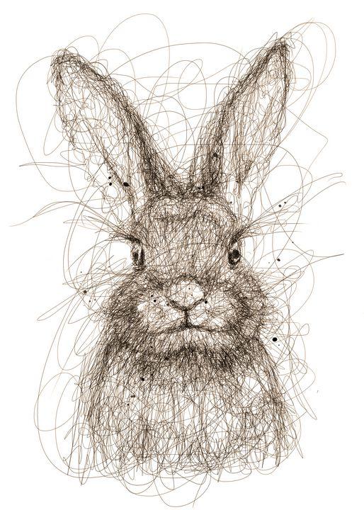 bunny art - izmo scribbles
