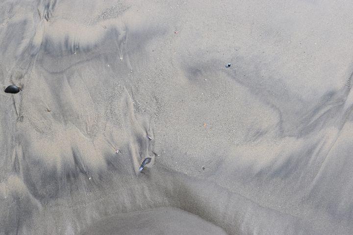 Sands of Oceanside #29 - Photos & Paintings