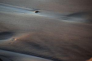 Sands of Oceanside # 47