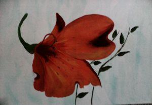 Big Flower - Nimmi's Gallery