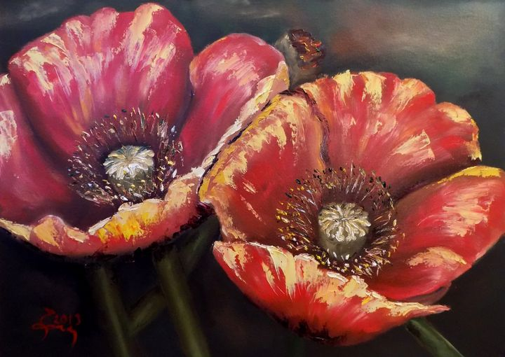 Poppy Duo - Nick Ercsei