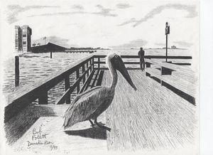 Dunedin Pier - RobertE