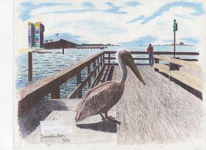 Dunedin Pier Morning