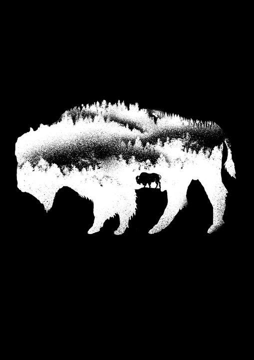 bison - barmalisiRTB