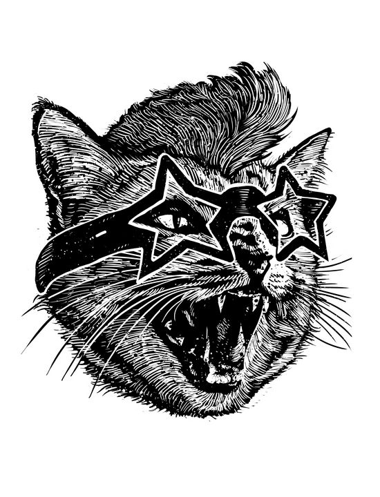 Angry Cat - barmalisiRTB