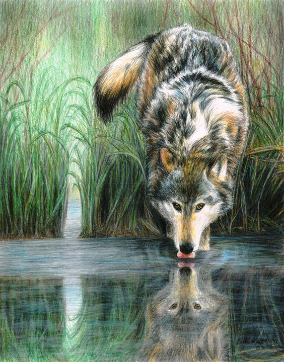 Afternoon Reflection - Carla Kurt Art