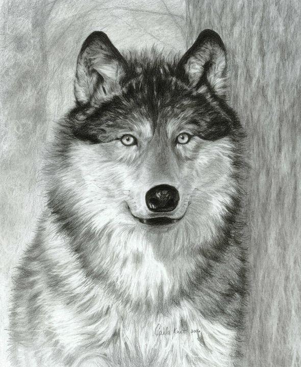 Alpha - Carla Kurt Art