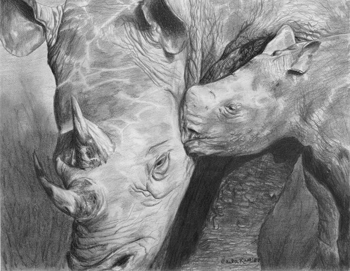 Rhino Love - Carla Kurt Art