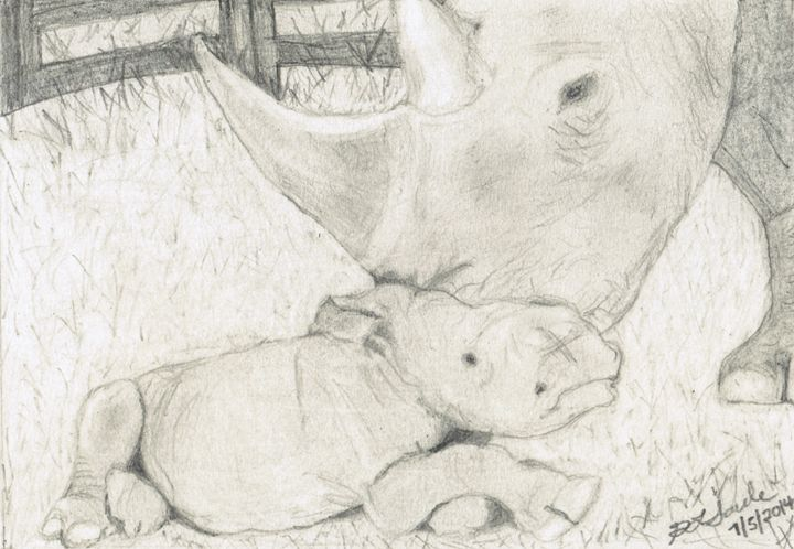 Rhinos - Drawing on Love by Gretchen Saule