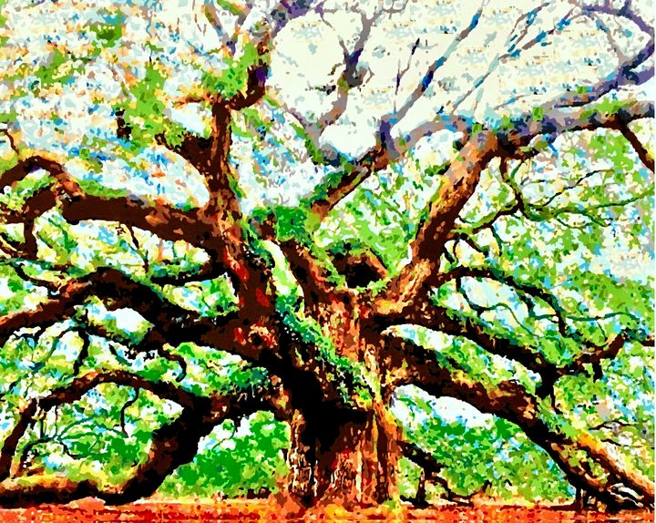 Angel Oak Tree - 'Artists Aflame' Family Gallery