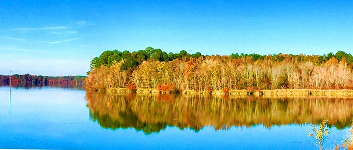 Fall Shoreline Reflections on Lake M - 'Artists Aflame' Family Gallery