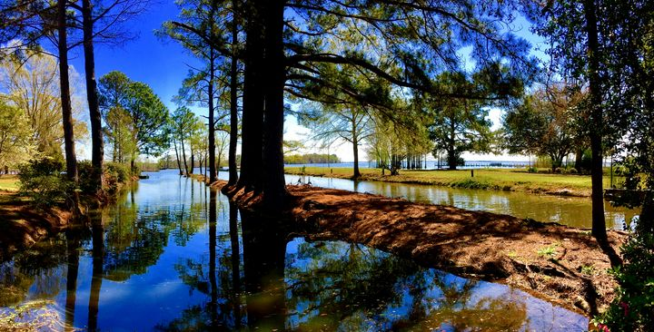 Goat Island Canal off Lake Marion - Lake Marion Artisans - Groen Gallery