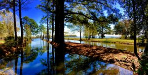 Goat Island Canal off Lake Marion
