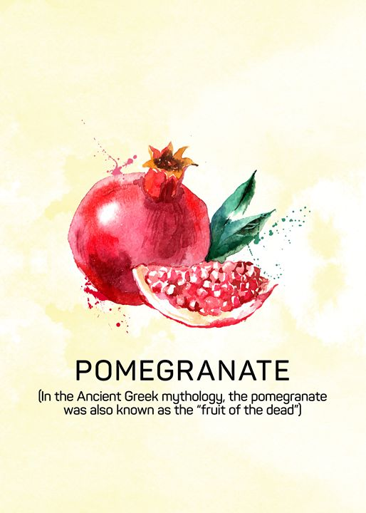 Fun with Fruits - Pomegranate - Susanne Floe